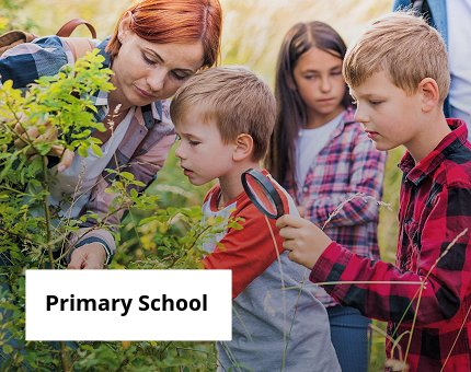 Education at Woodside Wildlife Park for primary children