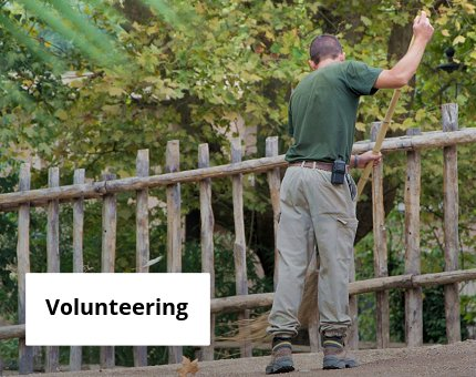 Education at Woodside Wildlife Park - Volunteering opportunities