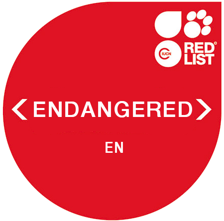 IUCN Red List - Endangered